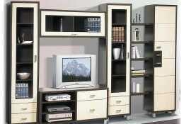 Мебель для гостиной Домино Венге