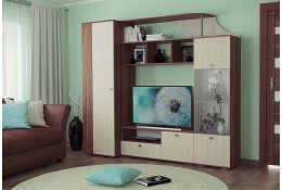 Шкаф комбинированный Камелия НМ 013.55